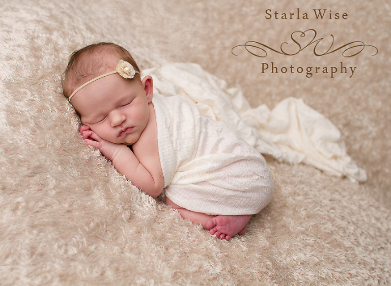 Posted in newborn sessions ·